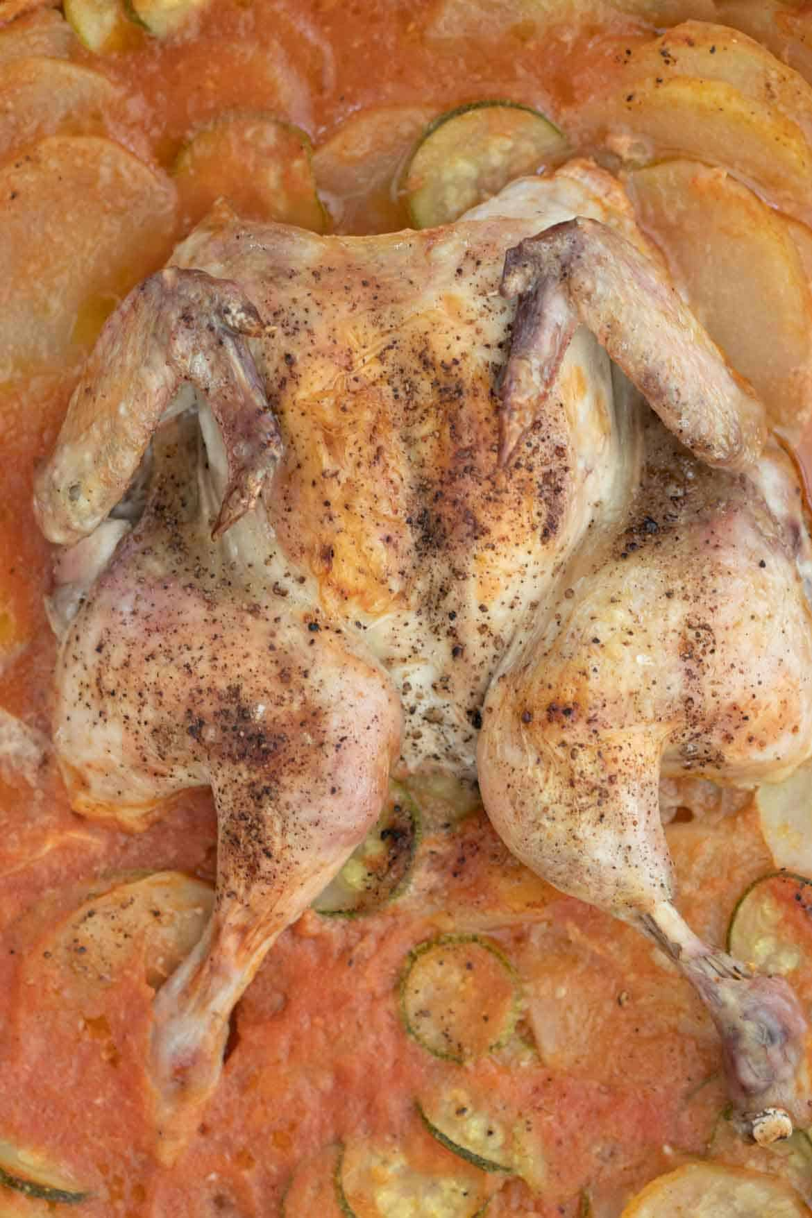 baked spatchcock chicken