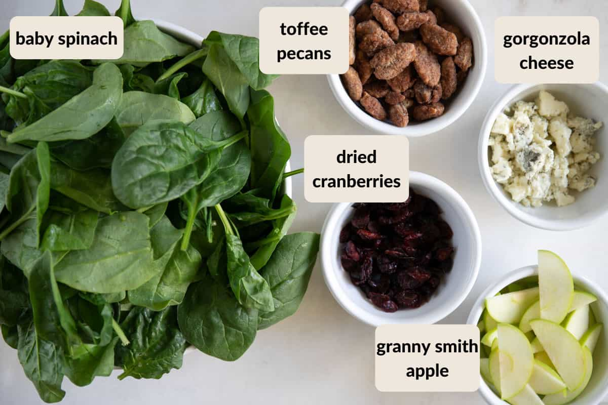 baby spinach, toffee pecans, gorgonzola cheese, dried cranberries, and slice granny smith apple in bowls